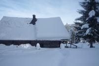 Winterfoto 2013