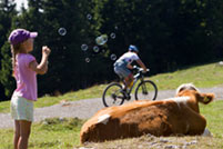 18. August: Grazer Bike-Marathon Stattegg