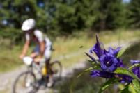 Der Grazer BikeMarathon Stattegg 2011